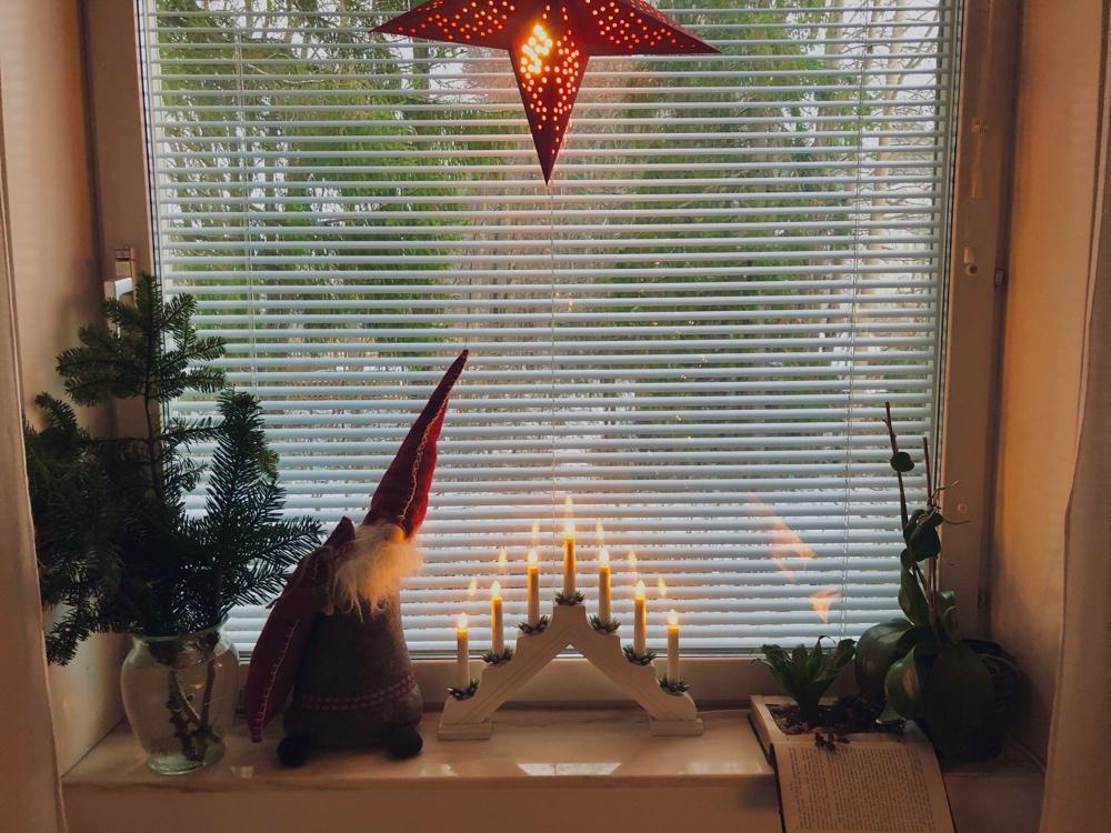 ett juldekorerat fönster där det står gran i vatten en tomtefigur julstjärna och växter av sebastian thorell