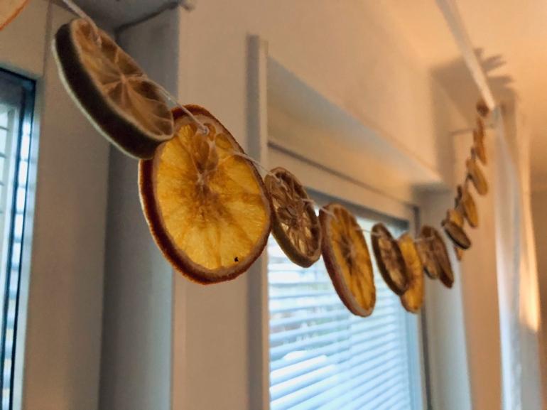 Bild på torkad apelsin citron och lime girlang som hänger vid ett fönster av sebastian thorell