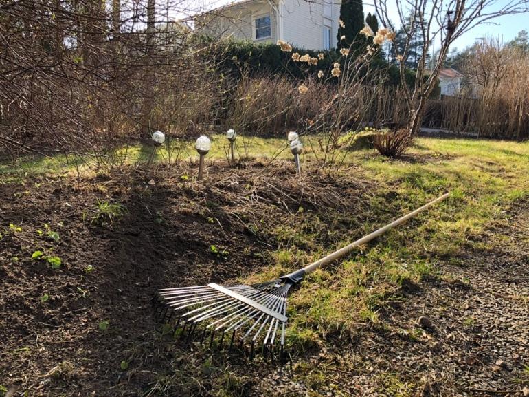 Bild på en trädgård med en kratta i fokus buskar och träd i backgrunden av sebastian thorell