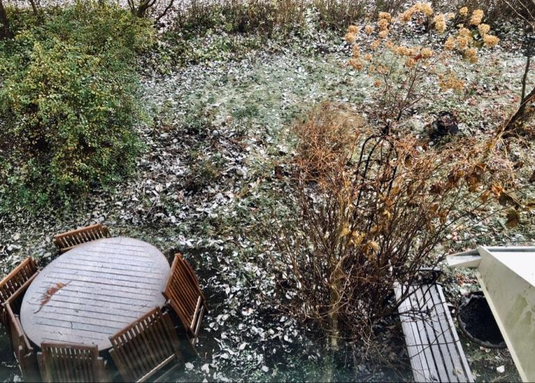 bild på en trädgård där första snön fallit man ser utemöbler buskar och en bänk av sebastian thorell