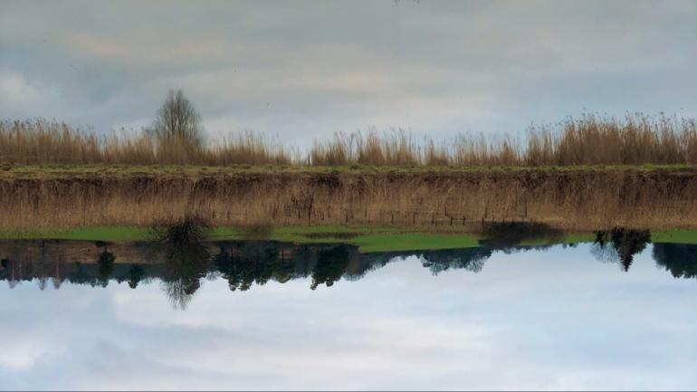 bild tagen av speglingen av vatten som är tagen upp och ner av sebastian thorell
